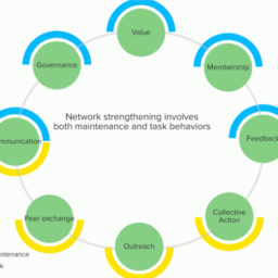 Exploring a Network's Value: Lessons from Ethiopia - Picture1