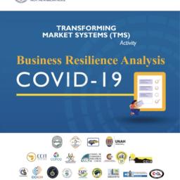 Honduras COVID-19