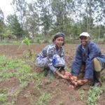 Capturing Local Impact - FTF Kenya AVCD